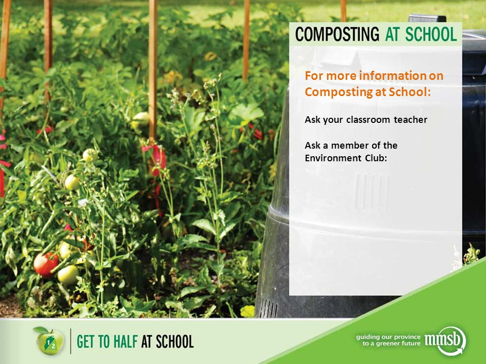 For more information on Composting at School: Ask your classroom teacher Ask a member of the Environment Club: