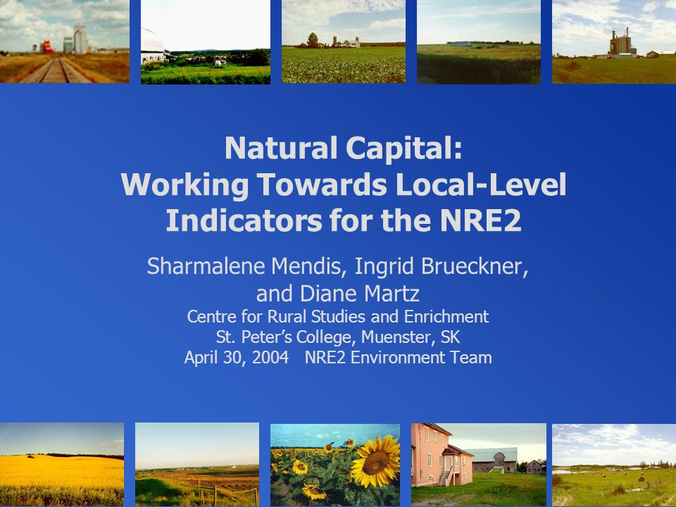 Natural Capital: Working Towards Local-Level Indicators for the NRE2 Sharmalene Mendis, Ingrid Brueckner, and Diane Martz Centre for Rural Studies and Enrichment St.