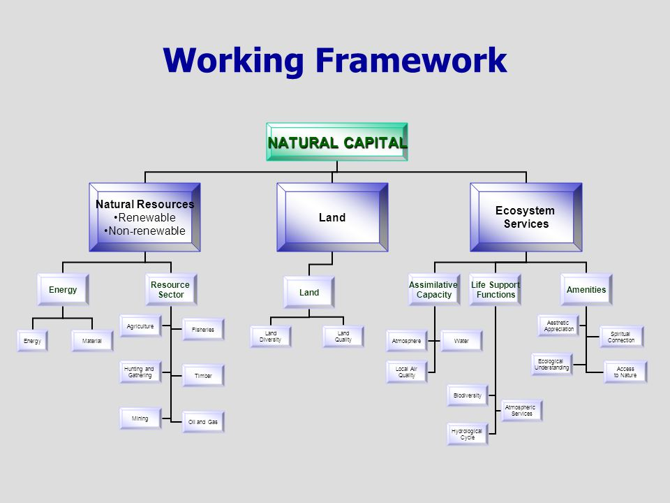Working Framework NATURAL CAPITAL Natural Resources Renewable Non-renewable Energy Material Resource Sector AgricultureFisheries Hunting and Gathering Timber MiningOil and Gas Land Diversity Land Quality Ecosystem Services Assimilative Capacity AtmosphereWater Local Air Quality Life Support Functions Biodiversity Atmospheric Services Hydrological Cycle Amenities Aesthetic Appreciation Spiritual Connection Ecological Understanding Access to Nature