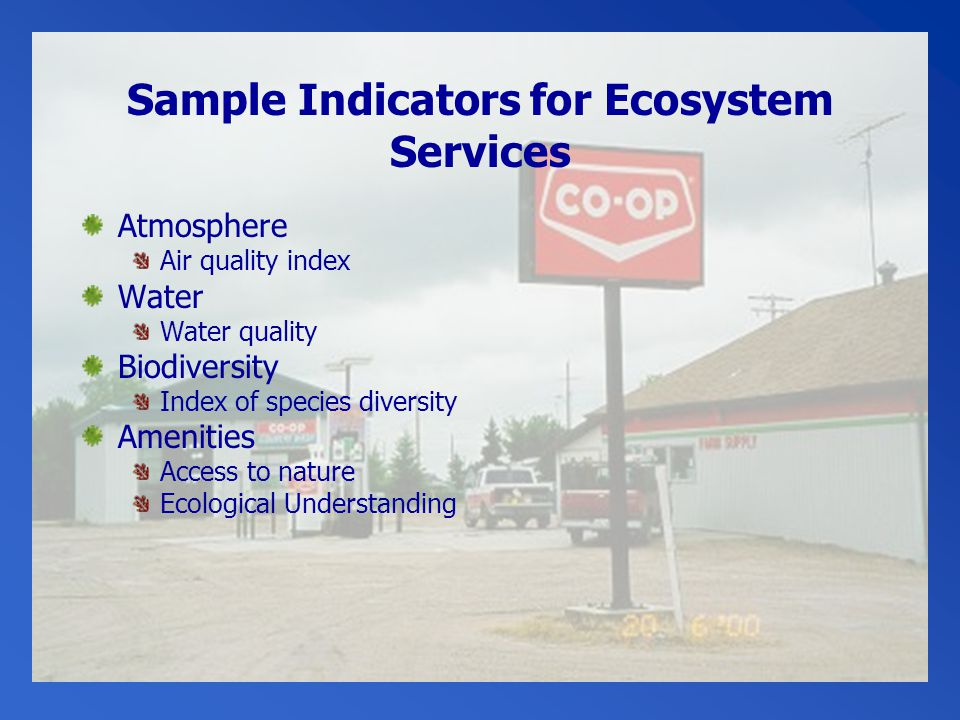 Sample Indicators for Ecosystem Services Atmosphere Air quality index Water Water quality Biodiversity Index of species diversity Amenities Access to nature Ecological Understanding
