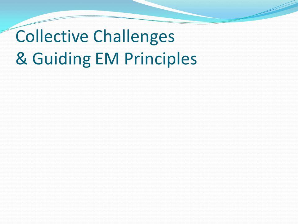 Principles of Emergency Management Progressive Integrated Risk-driven Collaborative Coordinated Flexible Professional Comprehensive 1 1 2 2 3 3 11 4 4 5 5 6 6 7 7 8 8
