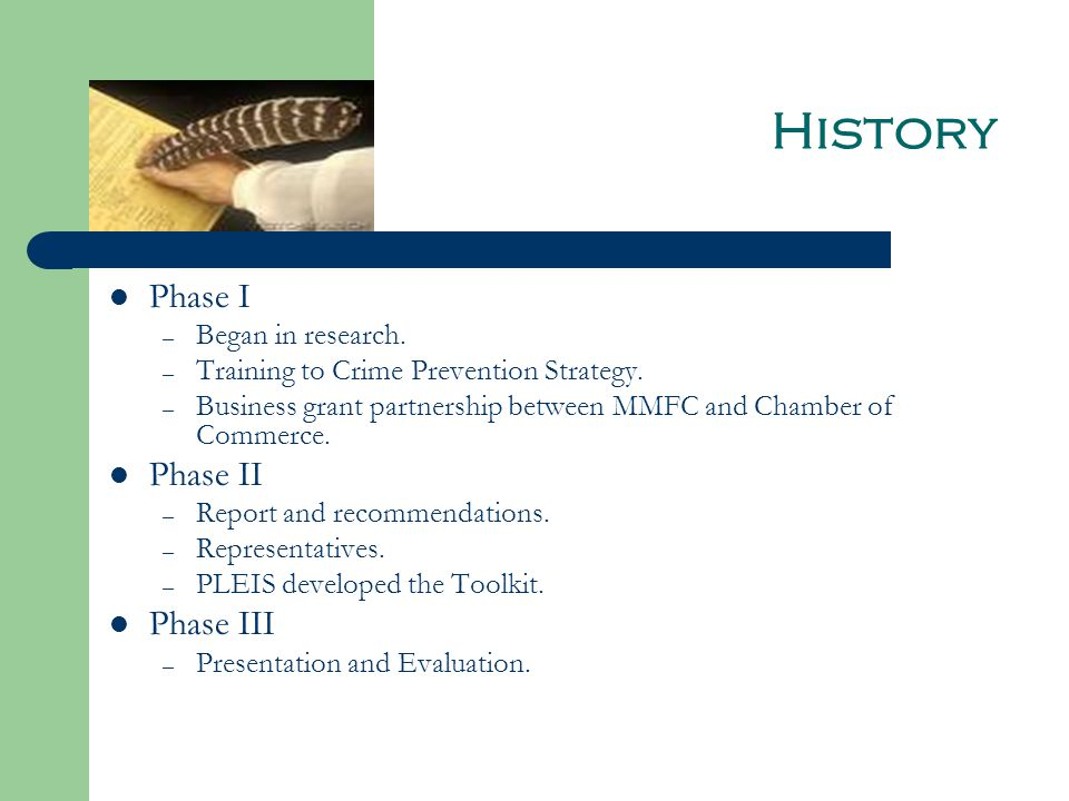 History Phase I – Began in research. – Training to Crime Prevention Strategy.
