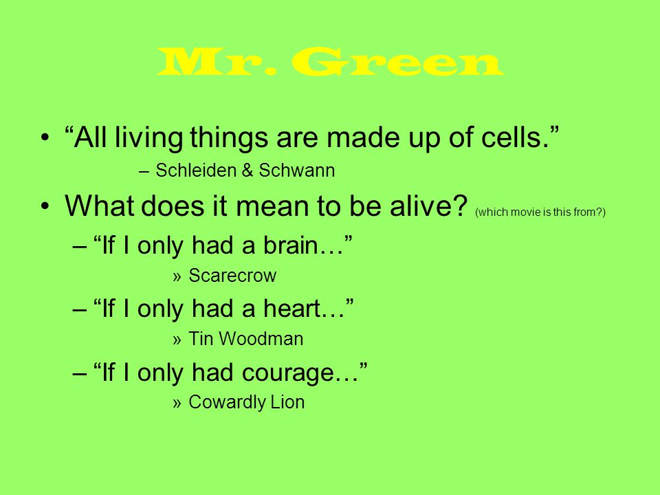 Mr.Green Mr. Green Acronym What's Mr. Green.