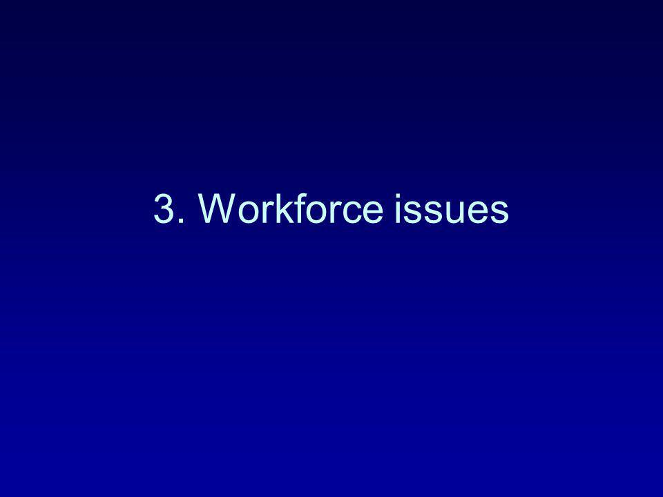 3. Workforce issues
