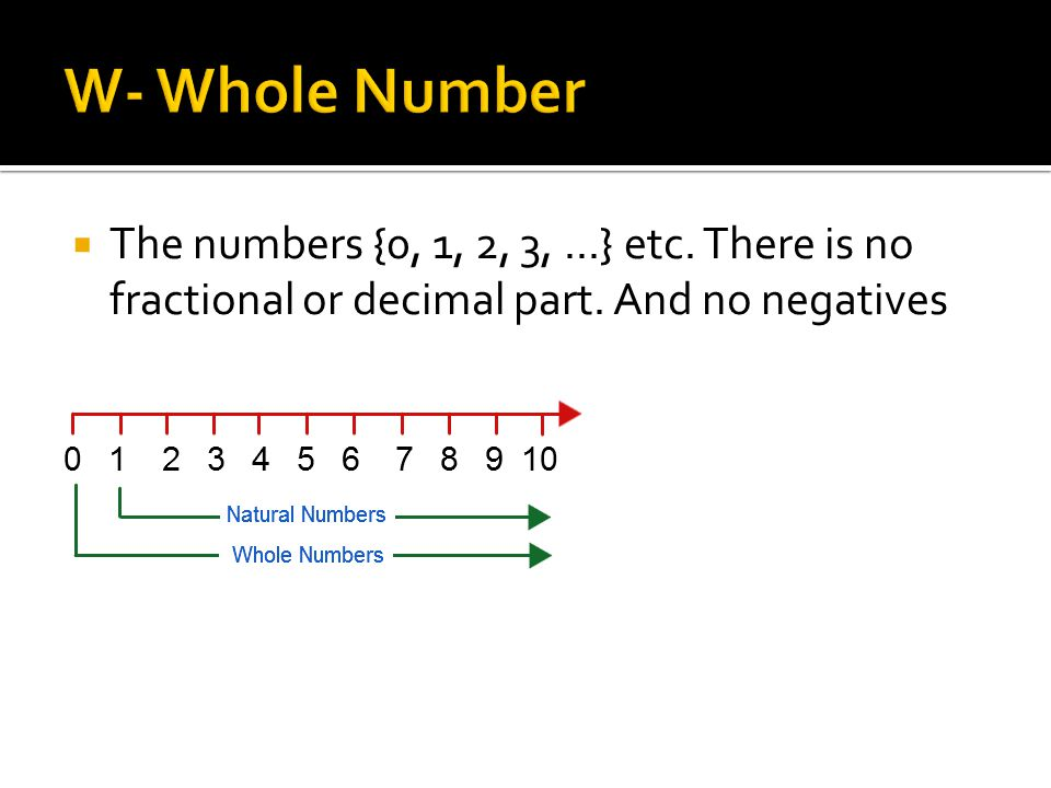  The numbers {0, 1, 2, 3,...} etc. There is no fractional or decimal part. And no negatives