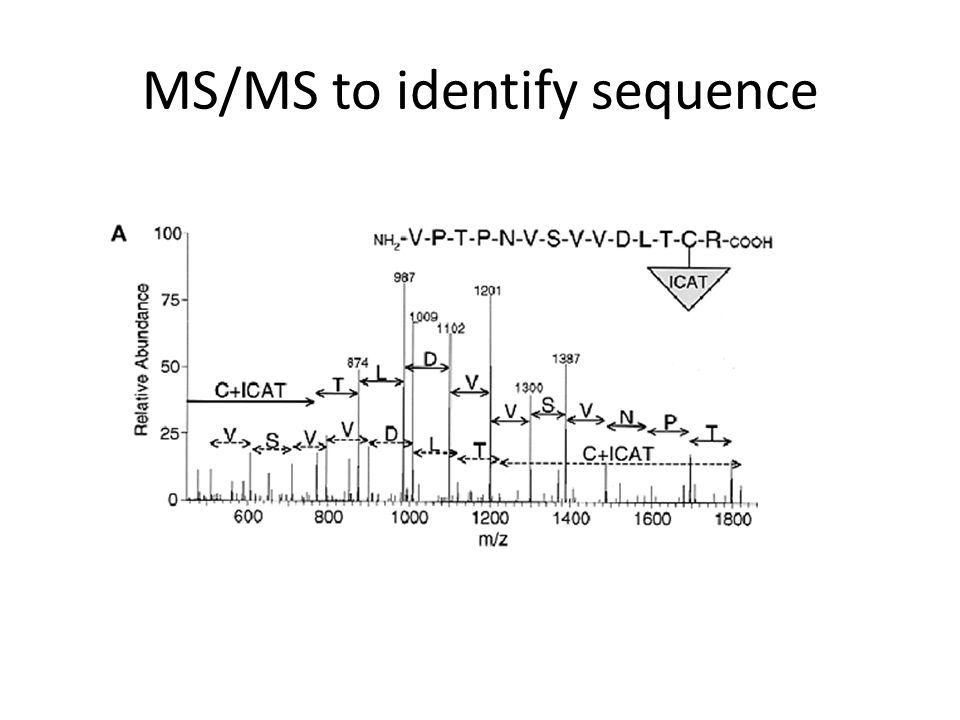 Compute Protein Ratios