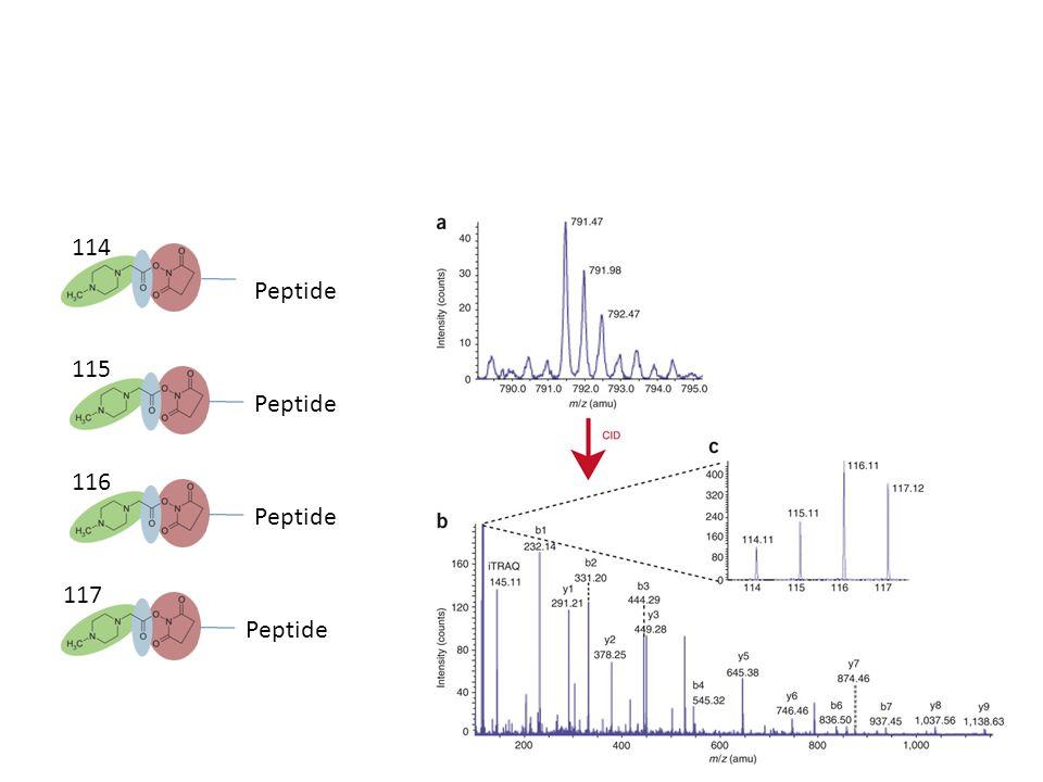 File formats Instrument specific formats – A big headache in proteomics Common Text Files – PKL – DTA – mzxml