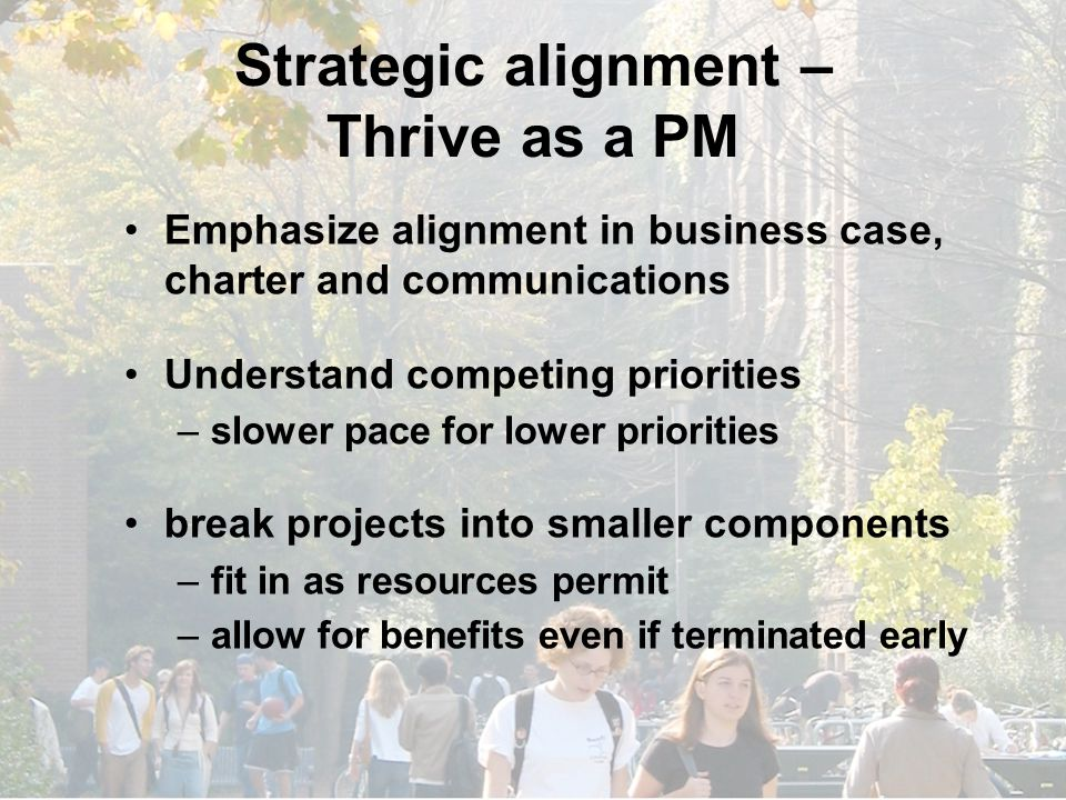 Strategic alignment – Thrive as a PM Emphasize alignment in business case, charter and communications Understand competing priorities –slower pace for lower priorities break projects into smaller components –fit in as resources permit –allow for benefits even if terminated early
