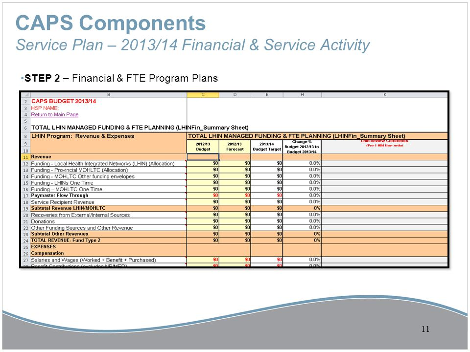 CAPS Components Service Plan – 2013/14 Financial & Service Activity STEP 2 – Financial & FTE Program Plans 11
