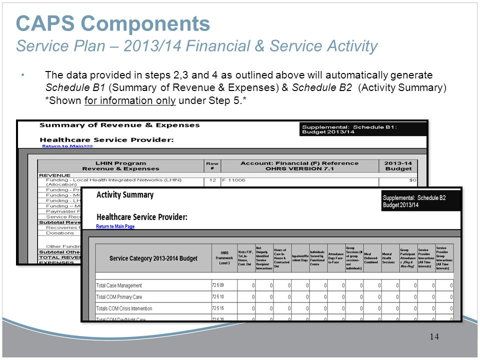 CAPS Components Service Plan – 2013/14 Financial & Service Activity The data provided in steps 2,3 and 4 as outlined above will automatically generate