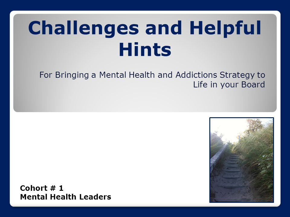 Challenges and Helpful Hints Cohort # 1 Mental Health Leaders For Bringing a Mental Health and Addictions Strategy to Life in your Board