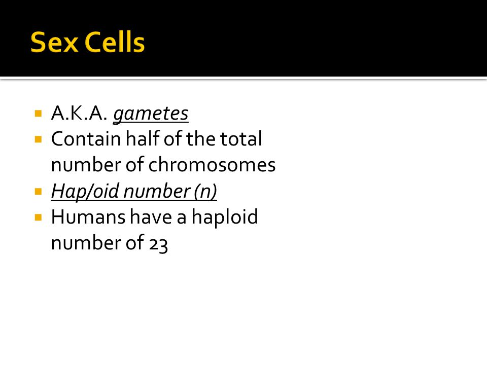  A.K.A. gametes  Contain half of the total number of chromosomes  Hap/oid number (n)  Humans have a haploid number of 23