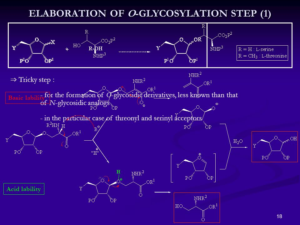18 ⇒ Tricky step : - for the formation of O-glycosidic derivatives, less known than that of N-glycosidic analogs - in the particular case of threonyl and serinyl acceptors ELABORATION OF O-GLYCOSYLATION STEP (1) Basic lability Acid lability
