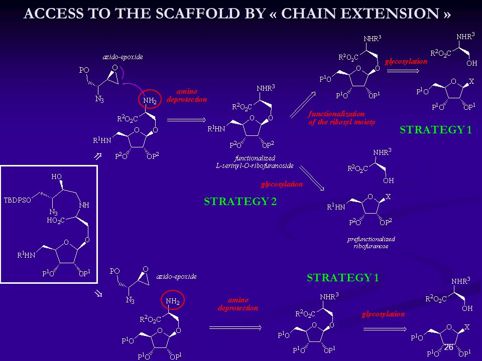 26 ⇗ ⇘ STRATEGY 1 STRATEGY 2 ACCESS TO THE SCAFFOLD BY « CHAIN EXTENSION »