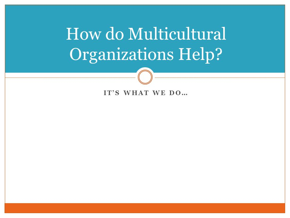 IT'S WHAT WE DO… How do Multicultural Organizations Help