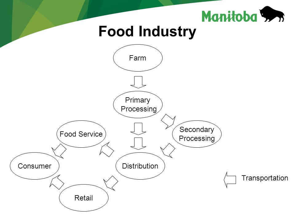 Food Industry Consumer Primary Processing Distribution Retail Food Service Farm Transportation Secondary Processing