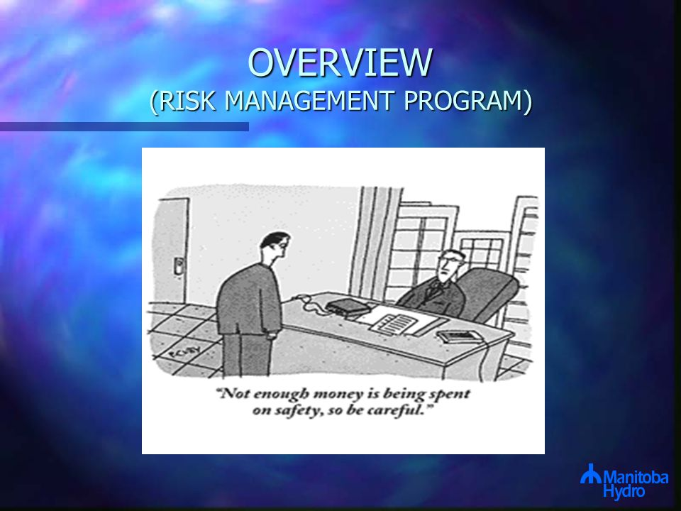 OVERVIEW (RISK MANAGEMENT PROGRAM)