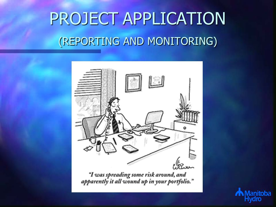 PROJECT APPLICATION (REPORTING AND MONITORING)