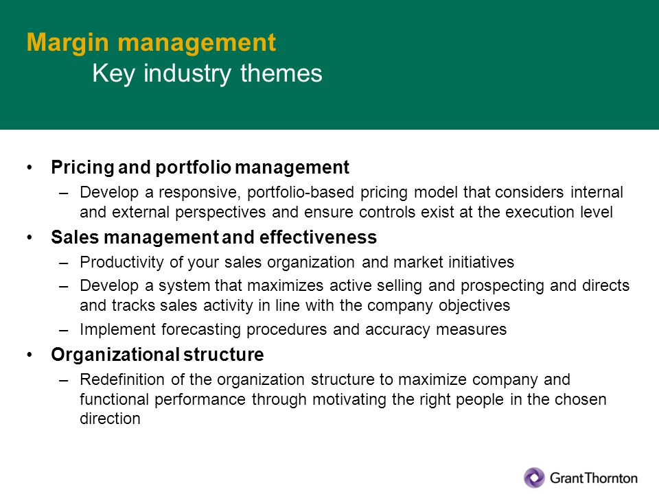 Margin management Key industry themes Pricing and portfolio management –Develop a responsive, portfolio-based pricing model that considers internal an