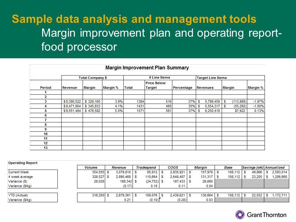 Sample data analysis and management tools Margin improvement plan and operating report- food processor