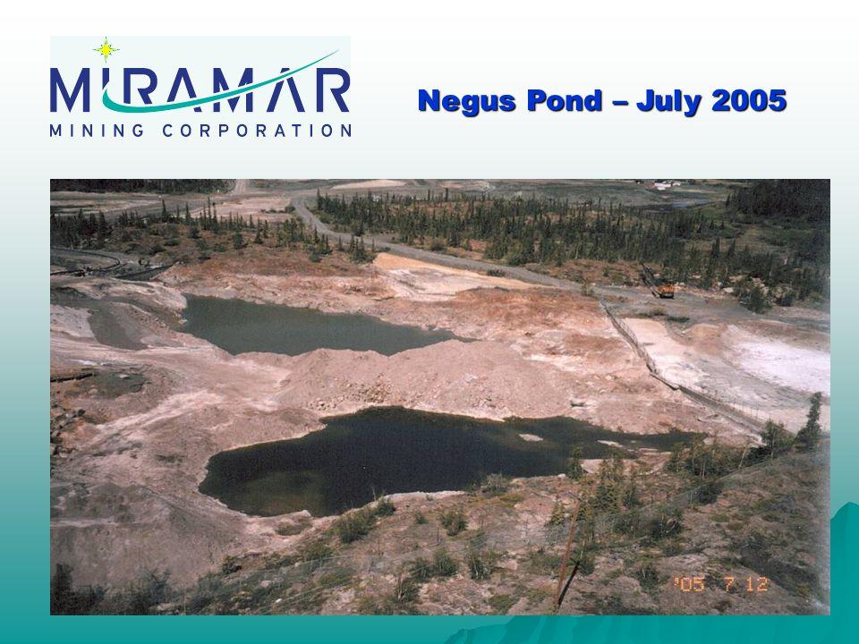 Negus Pond – July 2005