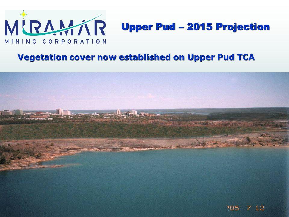 Vegetation cover now established on Upper Pud TCA Upper Pud – 2015 Projection