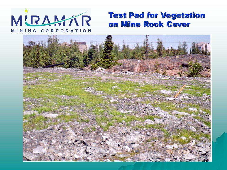 Test Pad for Vegetation on Mine Rock Cover