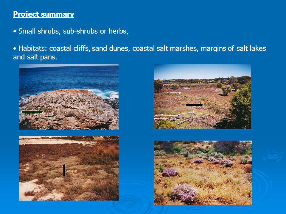 Project summary Small shrubs, sub-shrubs or herbs, Habitats: coastal cliffs, sand dunes, coastal salt marshes, margins of salt lakes and salt pans.