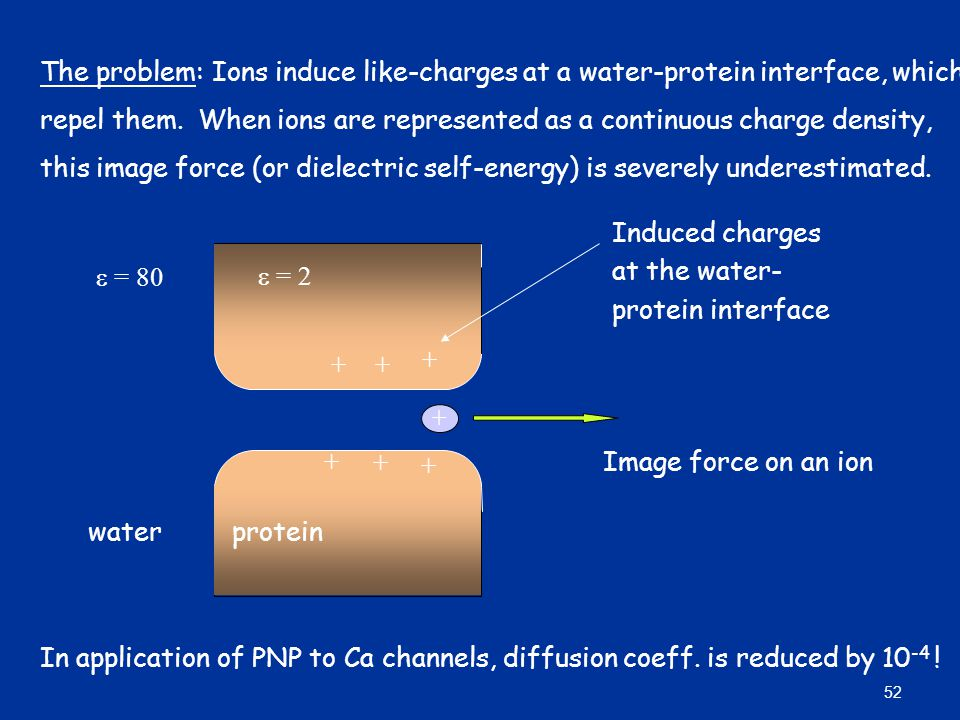 + + + + + + +  = 2  = 80 Induced charges at the water- protein interface Image force on an ion In application of PNP to Ca channels, diffusion coeff