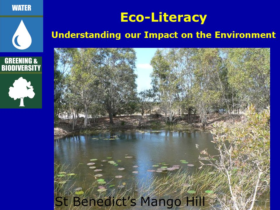 Eco-Literacy Understanding our Impact on the Environment St Benedict's Mango Hill