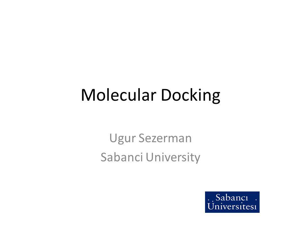 Molecular Docking Ugur Sezerman Sabanci University