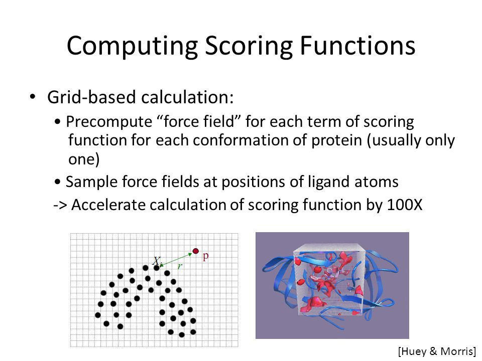 """Computing Scoring Functions Grid-based calculation: Precompute """"force field"""" for each term of scoring function for each conformation of protein (usual"""