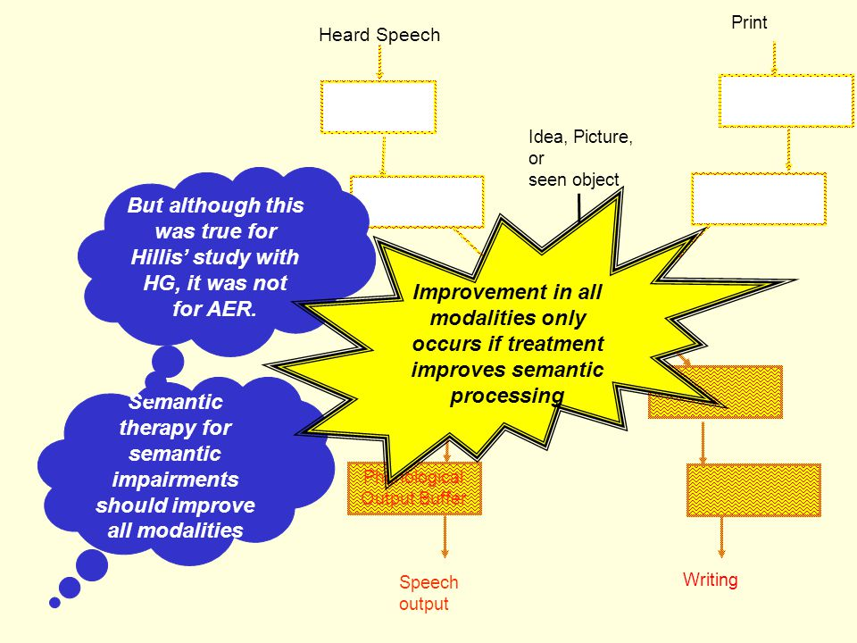 Phonological Output Lexicon Speech output Phonological Output Buffer Lexical Semantics Writing Heard Speech Print Idea, Picture, or seen object Lexica
