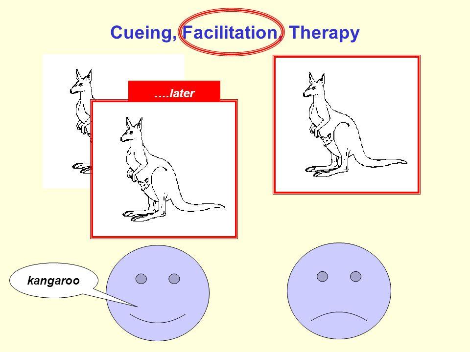 Cueing, Facilitation, Therapy k kangaro o