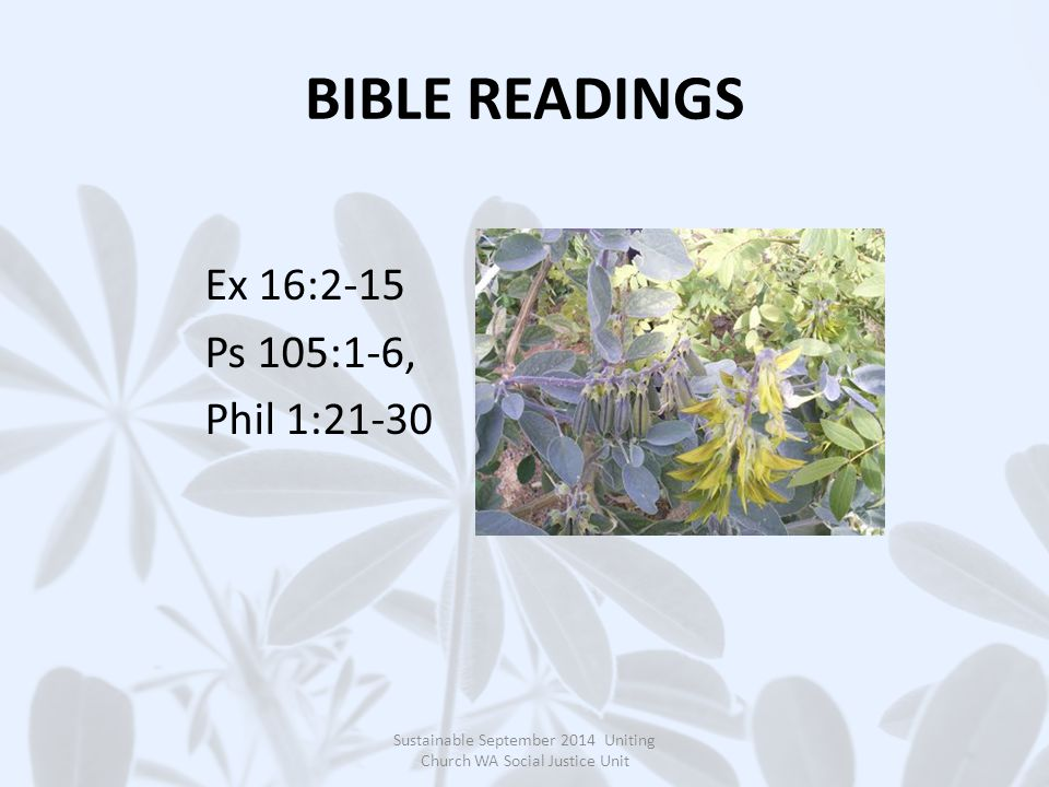 BIBLE READINGS Ex 16:2-15 Ps 105:1-6, Phil 1:21-30 Sustainable September 2014 Uniting Church WA Social Justice Unit