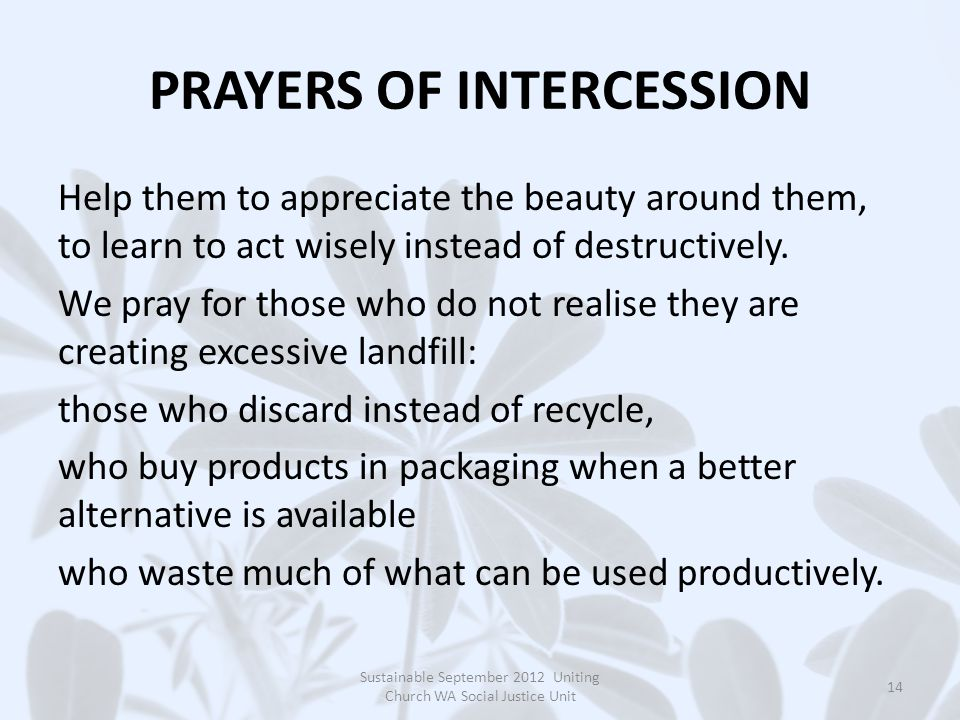 PRAYERS OF INTERCESSION Help them to appreciate the beauty around them, to learn to act wisely instead of destructively.