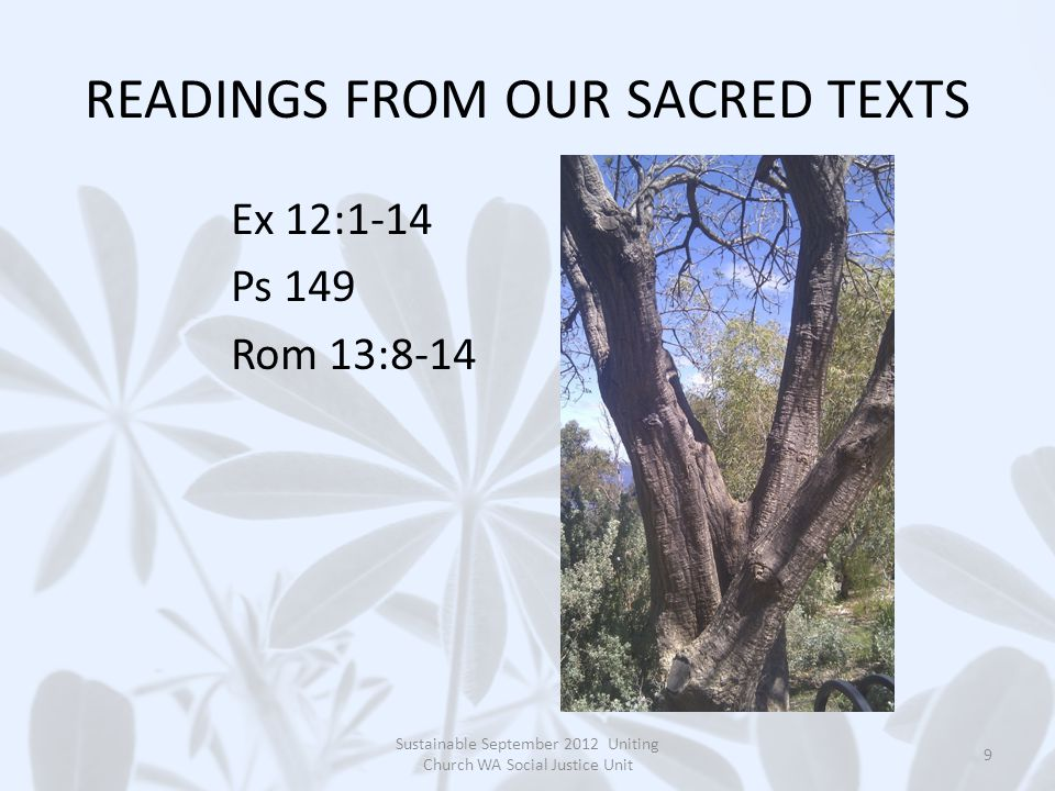 GOSPEL READING: GOSPEL READING: Mt 18:15-20 Leader: Lord, may your word live in us.