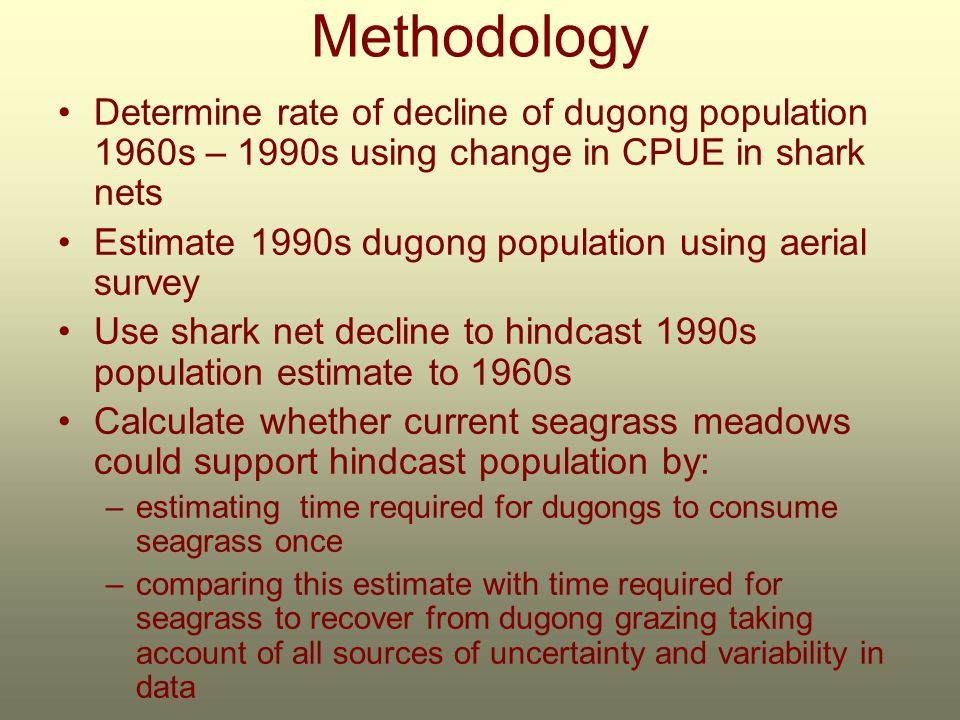 Methodology Determine rate of decline of dugong population 1960s – 1990s using change in CPUE in shark nets Estimate 1990s dugong population using aerial survey Use shark net decline to hindcast 1990s population estimate to 1960s Calculate whether current seagrass meadows could support hindcast population by: –estimating time required for dugongs to consume seagrass once –comparing this estimate with time required for seagrass to recover from dugong grazing taking account of all sources of uncertainty and variability in data
