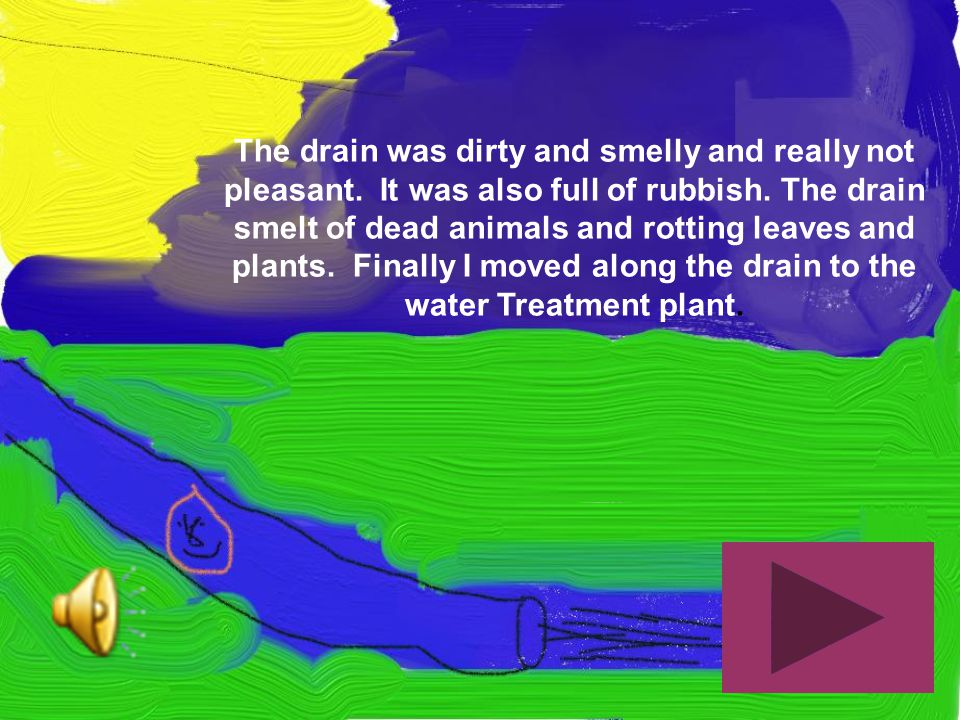 The drain was dirty and smelly and really not pleasant. It was also full of rubbish. The drain smelt of dead animals and rotting leaves and plants. Fi