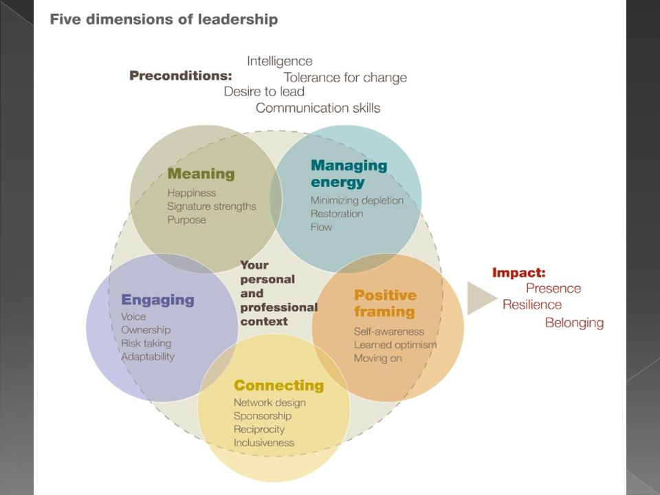 ► The ability to influence is the most powerful indicator of job satisfaction ► Supports emerging leaders in the challenge of bringing others along with them ► Congruence with the McKinsey model – 5 dimensions of leadership
