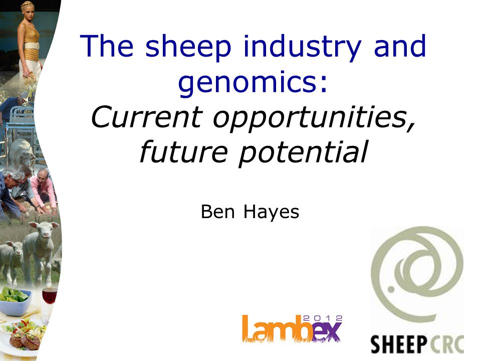 The sheep industry and genomics: Current opportunities, future potential Ben Hayes