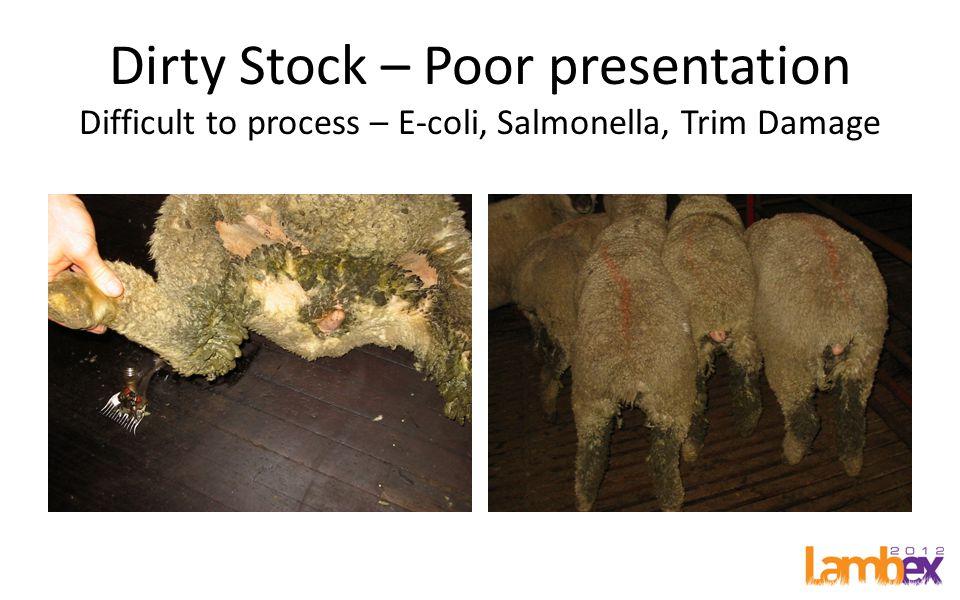 Dirty Stock – Poor presentation Difficult to process – E-coli, Salmonella, Trim Damage