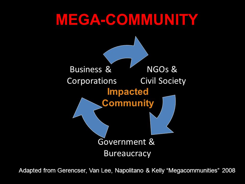 MEGA-COMMUNITY NGOs & Civil Society Government & Bureaucracy Business & Corporations Impacted Community Adapted from Gerencser, Van Lee, Napolitano &