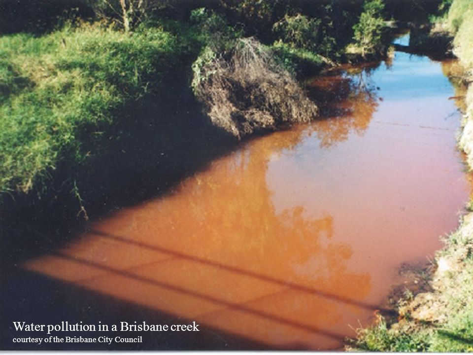Water pollution in a Brisbane creek courtesy of the Brisbane City Council