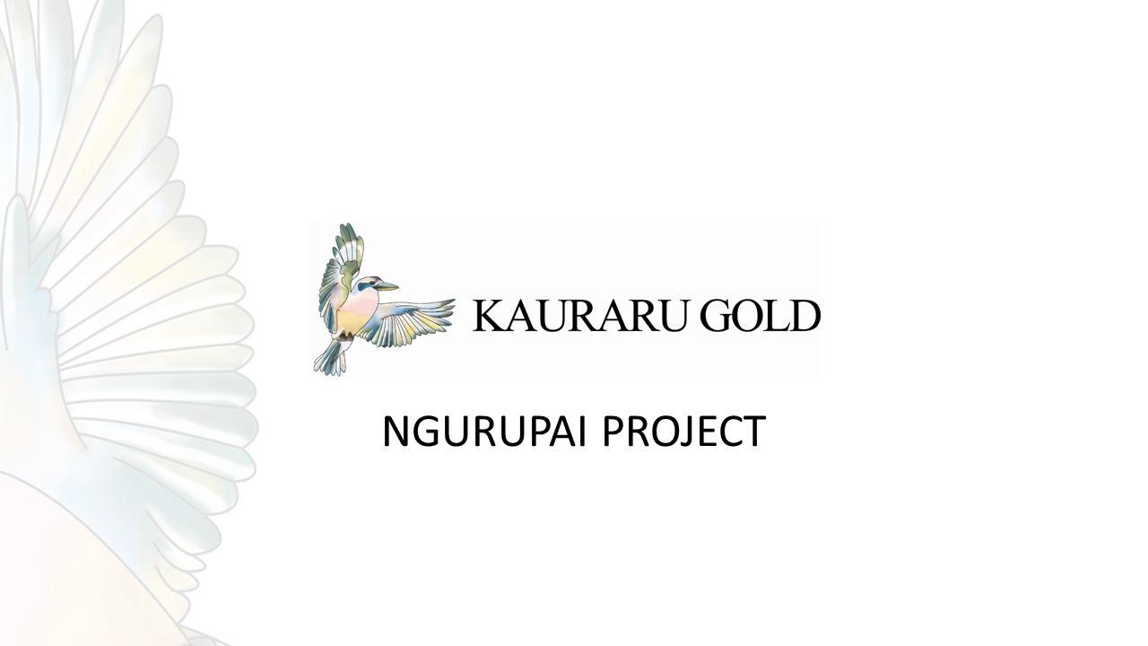 NGURUPAI PROJECT