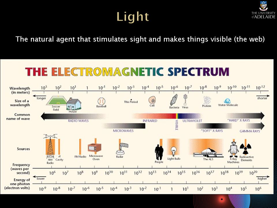 The natural agent that stimulates sight and makes things visible (the web)