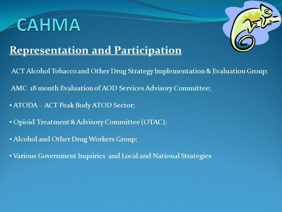 Representation and Participation ACT Alcohol Tobacco and Other Drug Strategy Implementation & Evaluation Group; AMC 18 month Evaluation of AOD Service