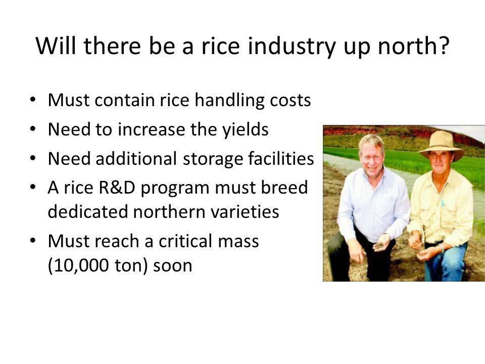 Will there be a rice industry up north? Must contain rice handling costs Need to increase the yields Need additional storage facilities A rice R&D pro