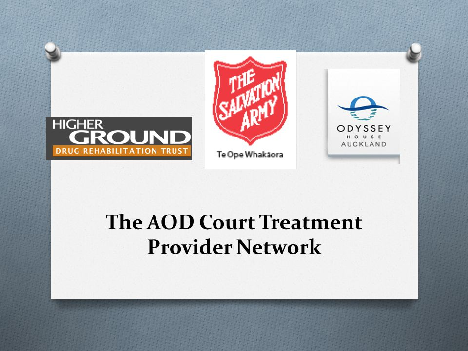 The treatment provider network (1) O Joint approach between treatment providers O Odyssey House: contract management & Case Management/ bed options O Salvation Army: Peer Support/ Beds & Community based options