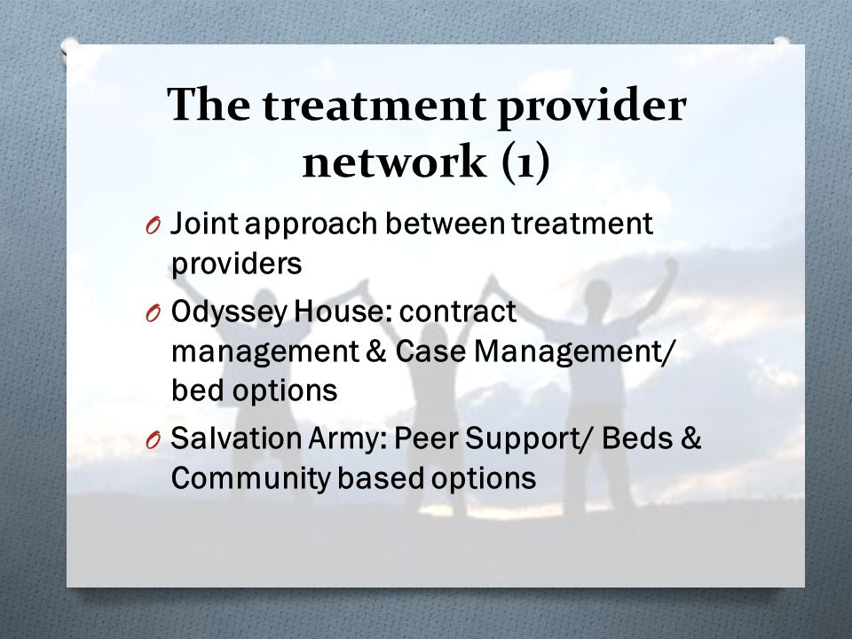 The treatment provider network (1) O Joint approach between treatment providers O Odyssey House: contract management & Case Management/ bed options O